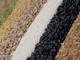 arroz e feijão.jpg