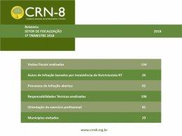 relatoriofiscalizacao12018